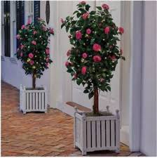 artificial potted trees ebay
