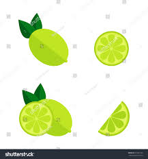 lime slice silhouette lime icon isolated on white background stock vector 619967156