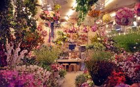 flower places pin by lam on flower shop flower shops and
