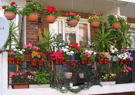 how beautiful options to arrange a balcony with flowers ideas