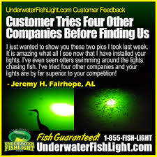 underwater lights customer testimonials underwater fishlight