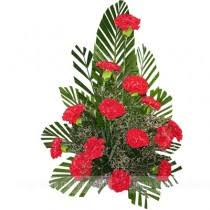 Red Carnations Carnations Flower Type Shop By