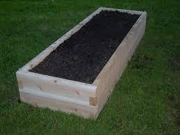Wood For Raised Vegetable Garden by Best 25 Cedar Raised Garden Beds Ideas On Pinterest Garden Bed