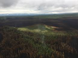 Alaska Wildfire Safety by East Fork Fire To Begin Demobilizing Ak Fire Info
