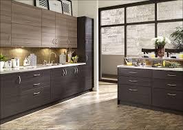 Kitchen Cabinets Faces by Kitchen Modern Cabinet Doors Flat Panel Kitchen Cabinets Modern