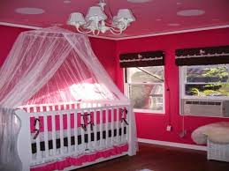 Download Baby Girl Bedroom Ideas For Painting Gencongresscom - Baby girl bedroom ideas decorating