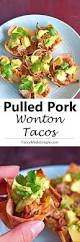 best 25 pork wonton recipe ideas on pinterest recipes pork