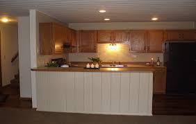 Overhead Kitchen Lights Kitchen Overhead Lighting Bathroom Ceiling Light Ceiling Shower