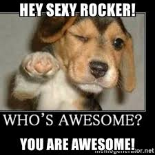 Sexy Dog Meme - hey sexy rocker you are awesome awesome dog meme generator