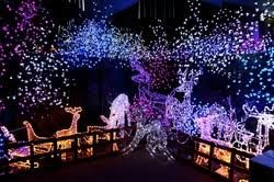 beautiful outdoor christmas lights in boise id boise lawn care