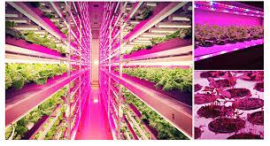 t5 vs led grow lights 5pcs t5 25w 11 25 strip tube led plant grow light aquarium