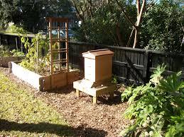 talula bee honey louisa enright u0027s blog