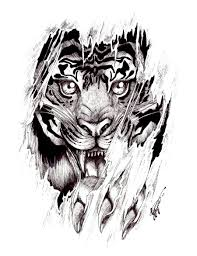 afghan hound tattoo tiger tattoo designs tattoo by shellvia blackthorn d36cle4