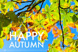 California Real Estate Market Roseville Ca And Our Real Estate Market Are Entering Autumn