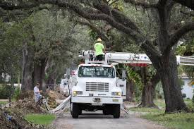 Fpl Outage Map Hurricane Irma Aftermath Fpl Spent Billions But Power Failed