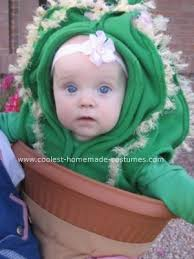 Flower Baby Halloween Costume 25 Cactus Costume Ideas Diy Costumes Funny