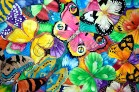 a collage of colourful butterflies amrayi