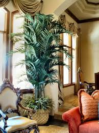Decorative Fake Trees For The Home by Emejing Faux Trees For Indoors Gallery Trends Ideas 2017 Thira Us