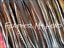 dreamcatcher extensions 100 whiting grizzly saddle feather hair extensions