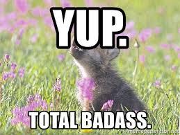 Wolf Meme Generator - baby insanity wolf meme generator mne vse pohuj