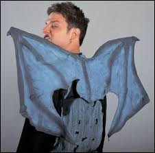 Gargoyle Costume Mens Halloween Costumes