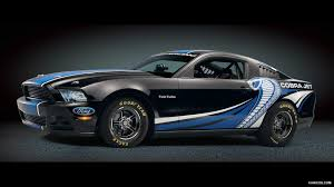 logo ford mustang shelby photo collection black mustang cobra wallpaper