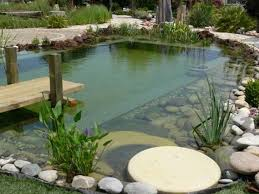 Backyard Swimming Ponds by 95 Best Piscinas Eco Images On Pinterest Natural Pools