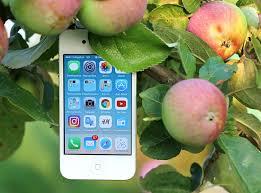 free photo phone iphone gadget apple free image on pixabay