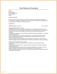 plain text resume template best of plain text resume sle plain text resume sle luxury