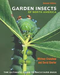 native plants of the midwest a comprehensive guide to the best read the blog