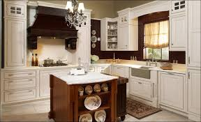 Kitchen Cabinets Pre Assembled Kitchen Kitchen Cabinet Kings Vs Cabinets To Go Cabinets Kitchen