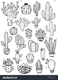 set isolated black sketch cactus succulent stock vector 618678422