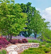 backyard wall decorating ideas landscape traditional with stone