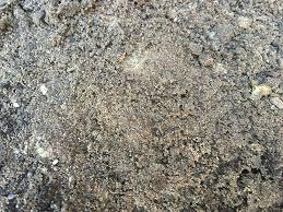 Garden Soil Types - what soil type do i have garden ninja ltd garden design