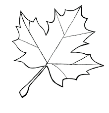 coloring pages of leaf shapes coloring page leaf coloring pages leaves coloring pages of fall