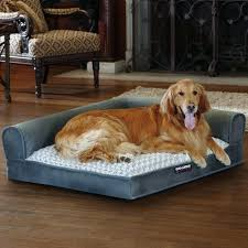 costco pet beds costco pet beds high quality dog beds for pet furniture ideas