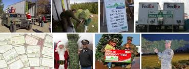 trees for troops home