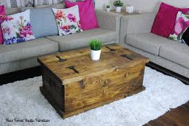 Rustic Chest Coffee Table Rustic Beaulieu Chest Ottoman Coffee Table New Forest Rustic