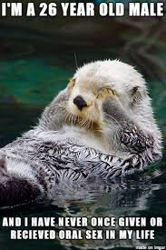 Sea Otter Meme - sexual confession sea otter meme on imgur