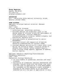 Example Resume by Cv Writing Tips Employment History