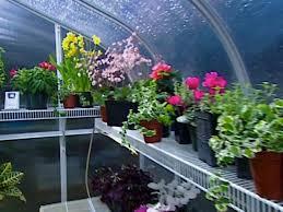 Garden Greenhouse Ideas Diy Greenhouse Projects Ideas Diy
