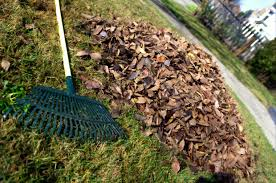 What Does A Landscaper Do by What U0027s A Fall Cleanup Greencare Landscapes U0026 Design