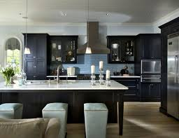 Light Colored Kitchen Cabinets by 41 Best Kitchens W Dark Cabinets Images On Pinterest Dream