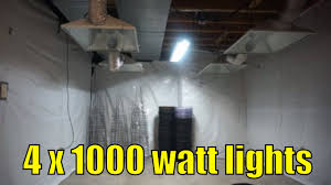 grow room lighting requirements cannabis grow room set up my 4 light set up youtube