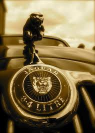 jaguar ornament re pin brought to you by agents of