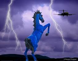 the with the blue mustang 6 disturbing things you probably never knew about denver s blue
