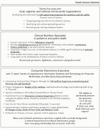 career summary resume format resume career summary examples