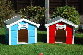 colourful cute little houses pets pinterest dog paws