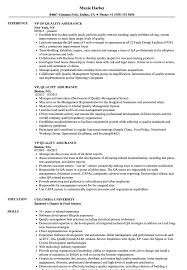 quality assurance resume exles vp quality assurance resume sles velvet