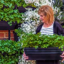 create a living wall from any vertical space